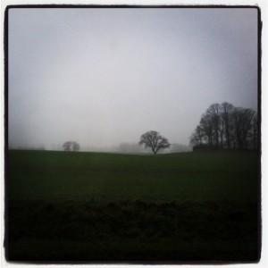 Wintery landscape in Schleswig-Holstein.
